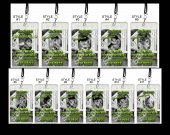 Frankenweenie Set of 12 VIP Party Invitation Passes or Party Favors