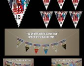 One Direction 6-Triangle Pennant Banner - Style 1