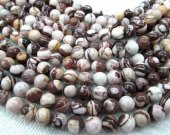 "wholesale 8mm round ball Australian zebra jasper genuine semi gemstone --5strands 16""/L"