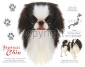 Japanese chin dog shirt, dog shirt, History of Japanese Chin Dog  T shirt.Size SM-6XL.Many Colors