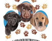 Puppy tee shirts.Labrad or Retrievers Puppy Love.lovedogs T shirt.Size SM-6XL..Many Colors..