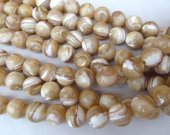 wholeasale  Shell Jewelry 5strands 3 4 5 6 8 9 10mm MOP white shell bead   round ball brown  jewelry beads