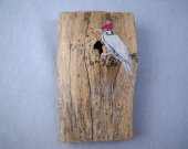 "Woodpecker drawing applied to wood, ""perched"" at a natural hole in piece.  Gleaming seed beads embedded like insects."
