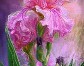 "Bead Embroidery Kit ""Pink Irises"", 10x15"""