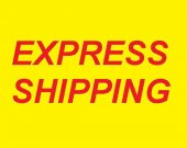 DHL EMS express shipping Upgrade and Safe