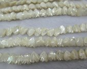 wholesale 2strands 12mm  Genuine MOP Shell ,Pearl Shell beads ,heart,fish carved white spacer bead