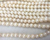 WHITE Round Pearls, Freshwater Cultured Pearl Beads June birthstone brides bridal Loose Beads  3-12mm full strand