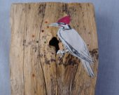 Drawing of woodpecker on paper, on  wood,  at a natural hole in piece.  Gleaming seed beads embedded like insects.