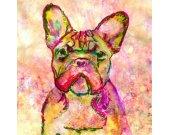 French Bulldog, Frenchie, Watercolor, Print, Colorful French Bulldog,Gift for French Bulldog owner,Frenchie painting,French Bulldog print
