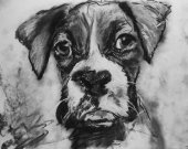 Boxer Dog Puppy print, charcoal boxer drawing, Boxer dog gift, giclee print,dog portrait, boxer dog gift ,drawing boxer print