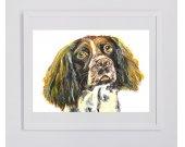 Springer Spaniel Canvas Print. Dog painting, Springer Spaniel Print , Gift for Springer spaniel owner, wall Art springer spaniel portrait