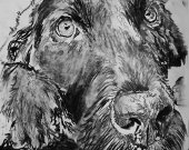 Black lab dog drawing, Charcoal art print, black and white, labrador dog,Labrador portrait, Black Labrador charcoal print