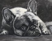 Frenchie, charcoal art print, Black French Bulldog,Gift for French Bulldog owner,Frenchie decor,Dog memorial,French Bulldog drawing  print
