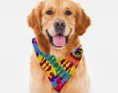 Rainbow Tie Dye Dog Bandana