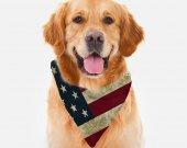 Rustic American Flag Patriotic Dog Bandana