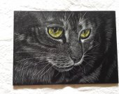 cat original engraved clay board black and white 5 x 7 inches