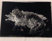 cat original  black and white engraved