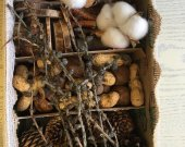 Forest treasures, Natural forest finds mix in box, Chestnut, Wooden slices, Decor, Pine larch and other cones, Florist supply, Craft.