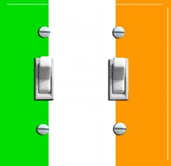 IRISH FLAG Double Switch Plate