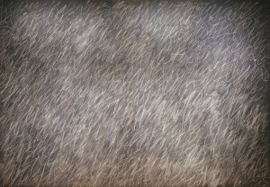 The Museum Outlet - Cy Twombly - Untitled - Canvas Print Online Buy (30 X 40 Inch)