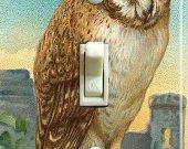 OWL Vintage Art Switch Plate (single)