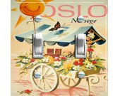 OSLO Fleurie Vintage Travel Poster Switch Plate (Double)
